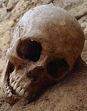 再開発でよみがえる沖縄戦の遺骨