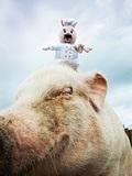 【ロースおじさん】経営者にして成功者──世の悩みを斬る、愛すべき豚