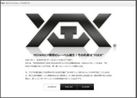 1109_ygex.jpg