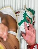 【ウルティモ・ドラゴン】ルチャリブレを通して、メキシコ、そしてプロレスの魅力を再び!