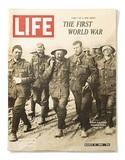 三次元の第一次世界大戦