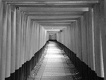 """京都は宗教の""""集積回路""""だった? 京都最強のパワースポット、伏見稲荷・鞍馬山が新宗教なワケ"""