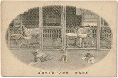 「物言わぬ勇士たち」の 戦争(上)