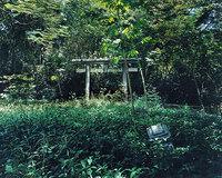 「神国日本」の残滓(上)