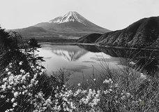 「富士の写真家」(上)