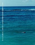 念力事報 第137回「あるいは大腸菌でいっぱいの海」