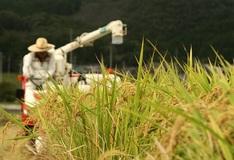 安倍政権の暴走で農家が潰され外資が肥え太る――種苗法改正に種子ビジネスを目論む経産官僚の罪