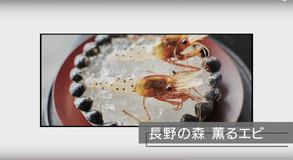 """世界の超一流シェフが生のエビにアリをまぶす!――昆虫を味わう""""美食""""の最前線と功罪"""