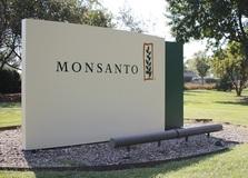 コロナ禍のドサクサで法改正の動きも……多国籍企業が世界の法も変える種子ビジネス・農薬ビジネスの裏側