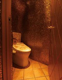1011_toilet.jpg