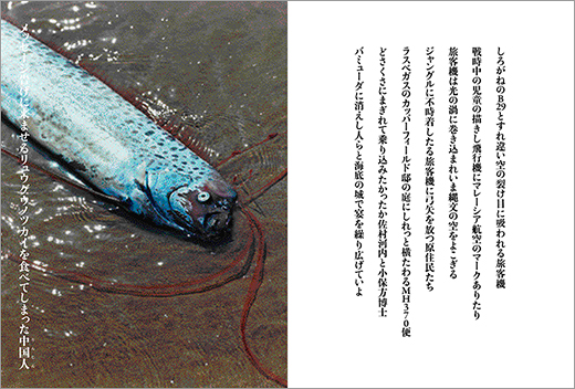 1405_nenriki_01.jpg
